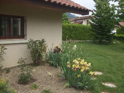 The Studio's Garden